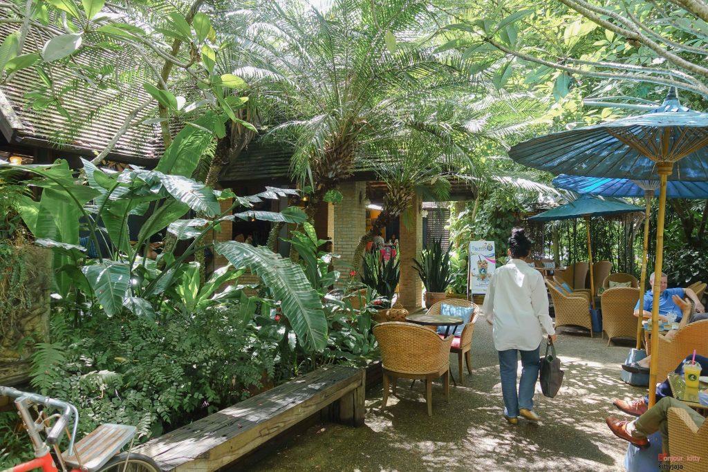 cafe-de-oasis-3
